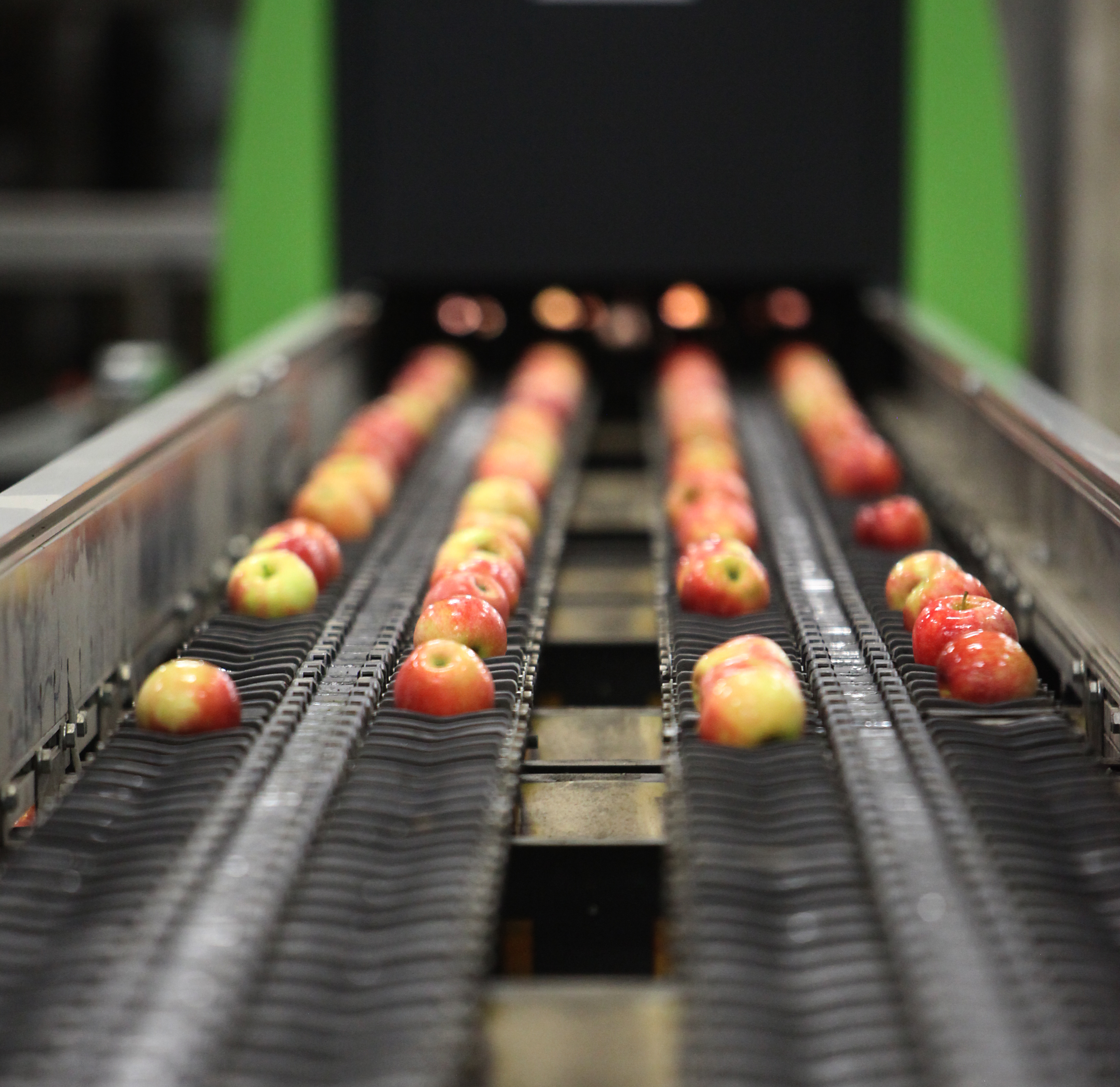Three reasons for using SWIR infrared imaging to improve quality control in the food and beverage industry